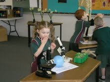 Got Science? Australian Science on Display at Mitchelton State School