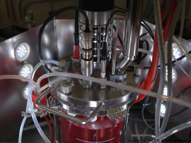 Bioreactor - red matter