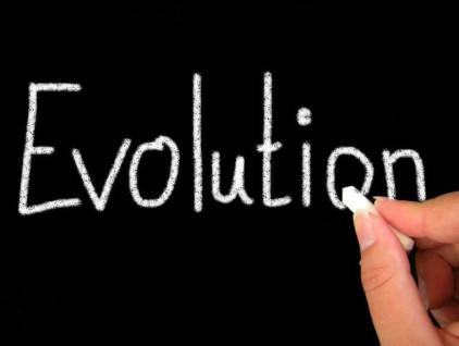 evolution pic